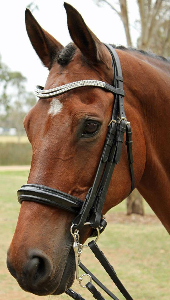Flexible Fit Bridles